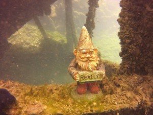We found one of William Garner's gnomes.