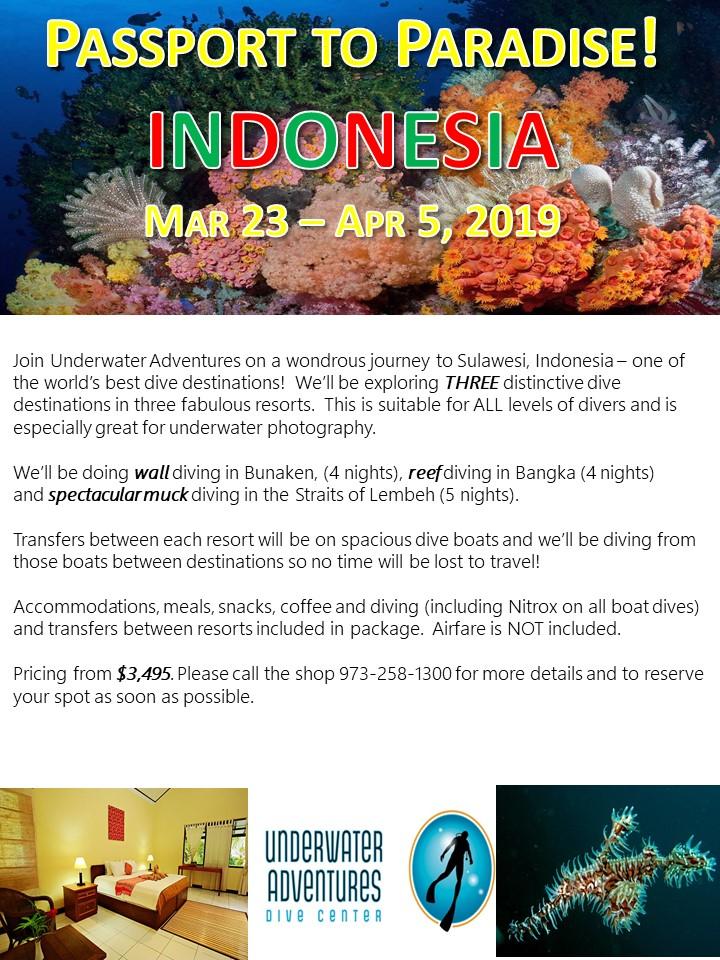 Indonesia 2019